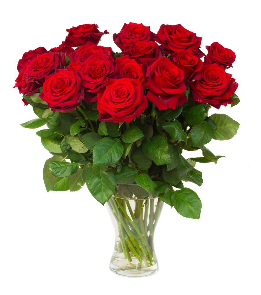 24 Roses +£79.00