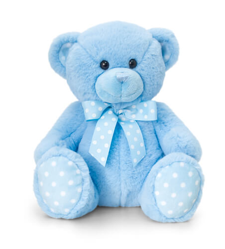 Blue Teddy Posh Paws +£7.95