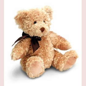 Bradley Teddy Bear