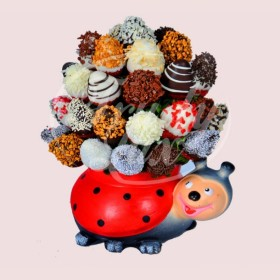 Ladybird Mix Bouquet